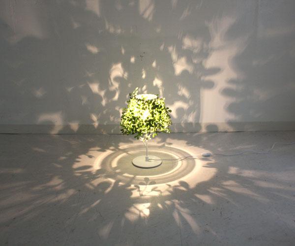 】フォレスティ テーブルランプ Foresti table lamp ディクラッセ DI CLASSE デザイン 照明器具【送料無料】