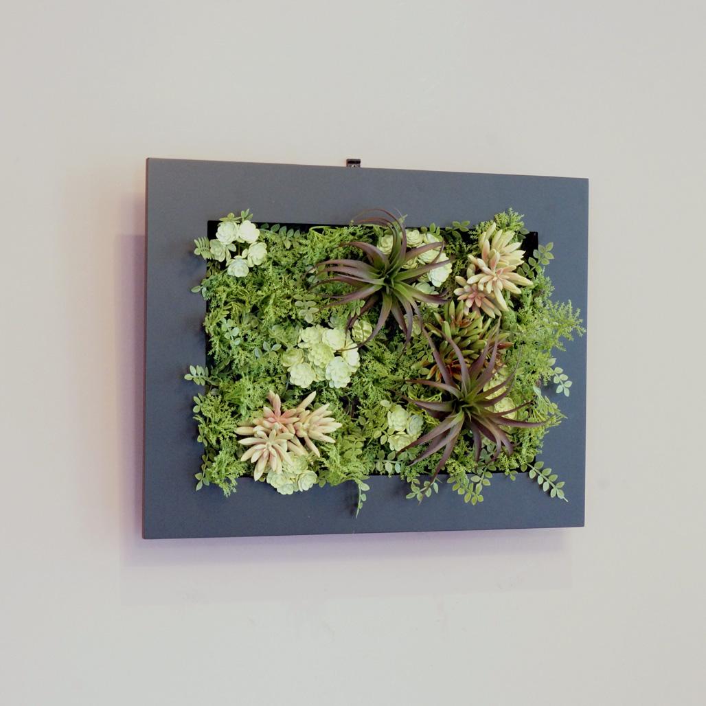 壁面グリーンフレーム 多肉植物 ブラック(光触媒)造花・観葉植物・インテリアグリーン