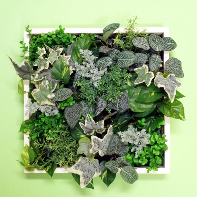 壁掛けグリーンフレーム550×550A(造花・フェイク)事務所 店舗 看板