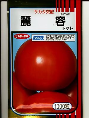 トマト サカタ交配・・・王様トマト麗容・・・<サカタの大玉トマトです。 種のことならお任せグリーンデポ>