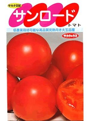 トマト サカタ交配・・・サンロード・・・<サカタの大玉トマトです。 種のことならお任せグリーンデポ>