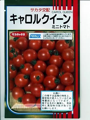 トマト サカタ交配・・・キャロルクイーン・・・<サカタのミニトマトです。種のことならお任せグリーンデポ>