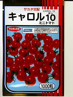 トマト サカタ交配キャロル10・・・<サカタのミニトマトです。 種のことならお任せグリーンデポ>