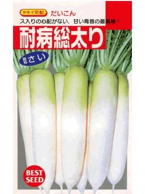 定番一番人気の秋大根品種 ダイコン タキイ交配 耐病総太り 祝開店大放出セール開催中 種のことならお任せグリーンデポ おトク タキイのダイコンです