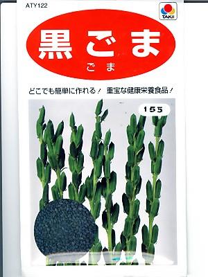 ゴマ種 黒ゴマ タキイ種苗の黒ゴマの種です 最新号掲載アイテム NEW 種のことならお任せグリーンデポ
