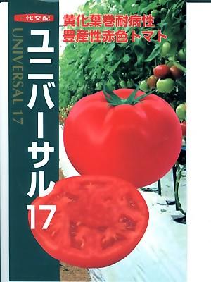トマト種子 ユニバーサル17  黄化葉巻病耐病性赤系トマト <ナント種苗のトマト種子です。>