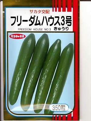 キュウリの種 サカタ交配・・フリーダム3号・・<サカタのキュウリ種子です。種のことならグリーンデポ>