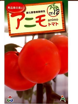 トマト種子 アニモ12 TY-12  武蔵野種苗園と朝日工業のトマト品種です。