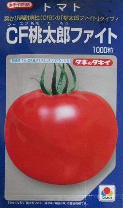 トマトの種 タキイ交配 CF桃太郎ファイト タキイ種苗のトマトの品種です。トマト種のことならお任せグリーンデポ