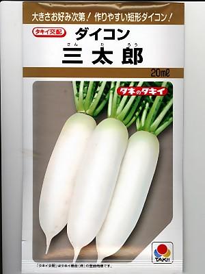 評判 秋から初夏まで幅広い時期に栽培できる優れたミニ大根品種特性 タキイ交配 期間限定 タキイ種苗の短形大根の種です 三太郎大根