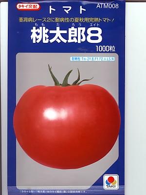 トマト種 タキイ交配 桃太郎8  タキイ種苗のトマト種です。種の通販はグリーンデポ