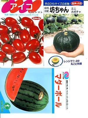 春播き野菜 代引き不可 果菜類の種セット 全国一律送料無料 おいしいミニ野菜