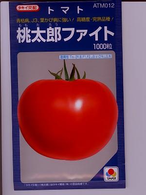 タキイ交配 桃太郎ファイト   タキイ種苗の完熟トマト品種です。