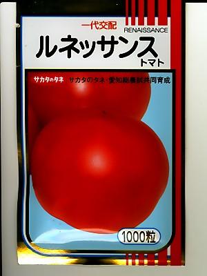 ルネッサンストマト   サカタのタネの大玉トマト品種です。1000粒規格