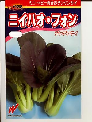 ニイハオ・フォン  渡辺農事のチンゲンサイ種子です。種のことならグリーンデポ