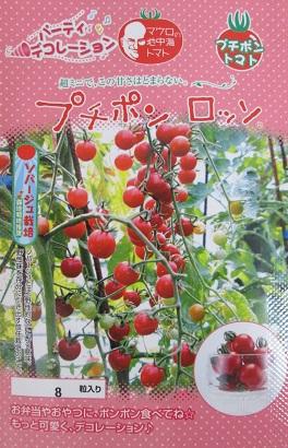 プチポン ロッソ  パイオニアエコサイエンスの超ミニトマト品種です。