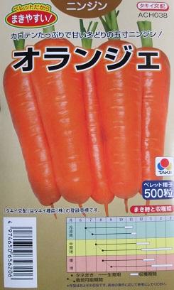人気ブレゼント ニンジン種 好評 タキイ交配 タキイ種苗のニンジン種子です オランジェニンジン