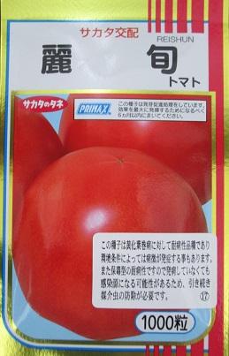 サカタ交配 麗旬トマト    サカタのタネの黄化葉巻病耐病性の大玉トマト品種
