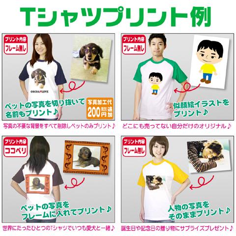 Raglan T shirt ★ photographic print / original T shirt