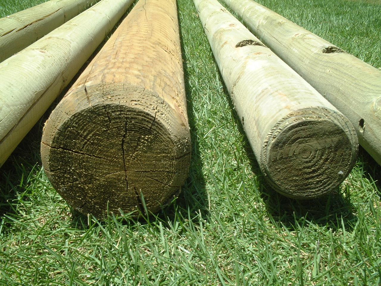 设置的工具包 (单座) 可以自由发挥,在花园里的木秋千