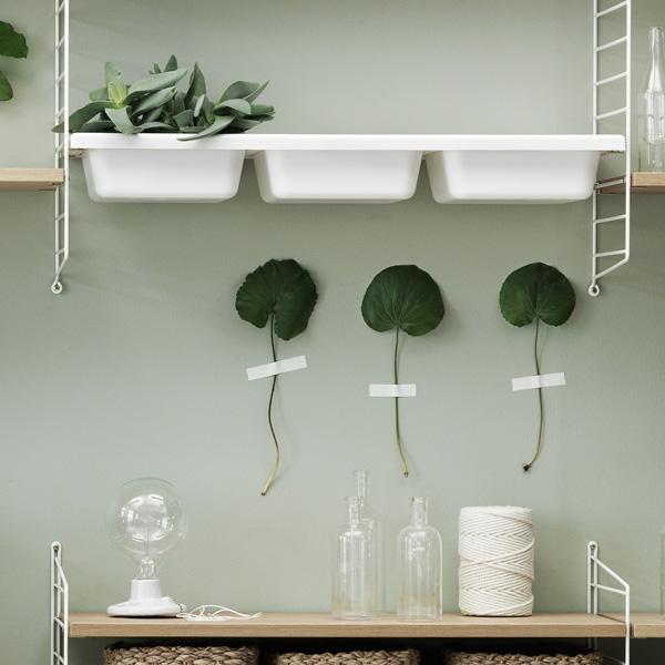 stringシェルフシステム Bowl Shelf