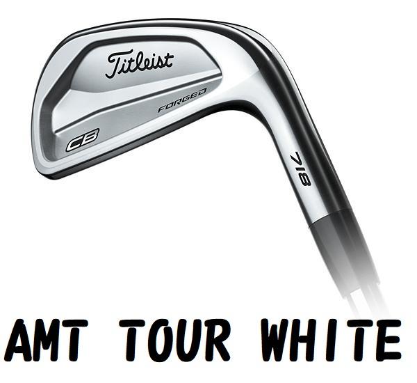 Titleist 718 CB AMT TOUR WHITE #5-#9,P タイトリスト エーエムティー ツアーホワイト アイアンセット