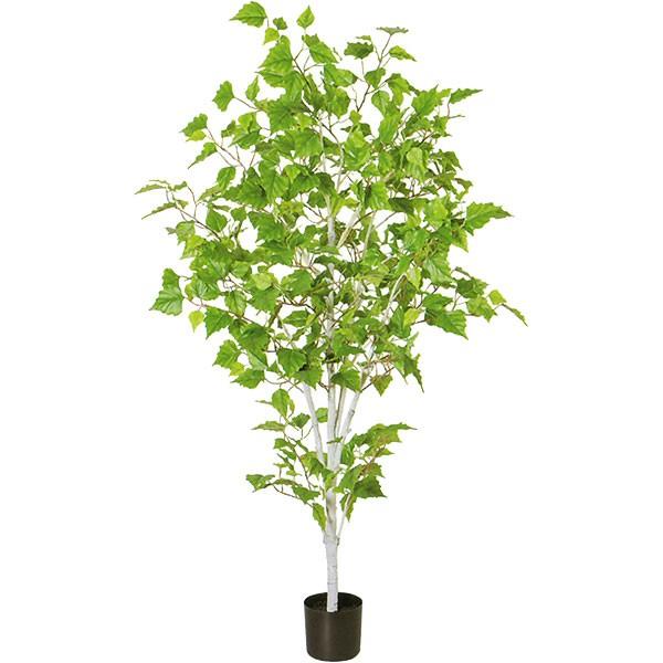 人工観葉植物 全高1.22m シラカバ 白樺 シラカンバ バーチ 人工樹木 造花 花材 葉材 インテリアグリーン フェイクグリーン オブジェ ディスプレイ 装飾