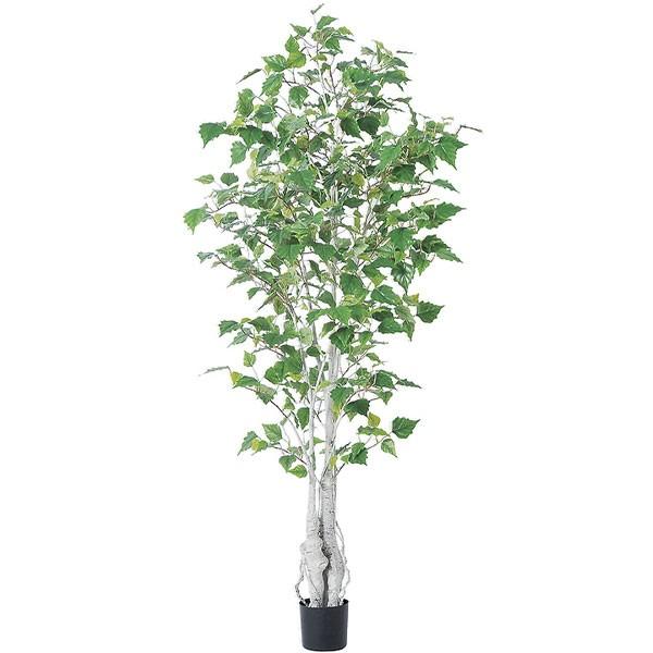 人工観葉植物 全高1.55m シラカバ 白樺 シラカンバ バーチ 人工樹木 造花 花材 葉材 インテリアグリーン フェイクグリーン オブジェ ディスプレイ 装飾