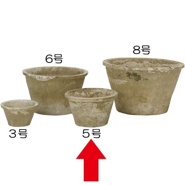 植木鉢 モスポット スタンダード アンティークホワイト 18個セット 5号 全高10cm×直径15cm 底穴あり テラコッタ 陶器鉢 野焼き プランター