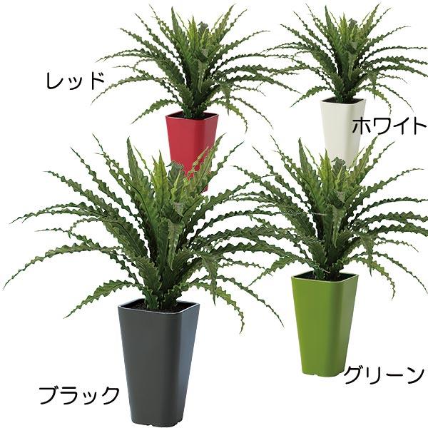 人工観葉植物 全高65cm アスプレニウム タニワタリ シダ植物 人工樹木 造花 インテリアグリーン フェイクグリーン オブジェ ディスプレイ 装飾
