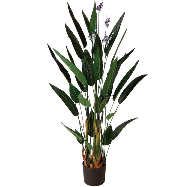 人工観葉植物 全高1.8m 花付き カンナ L はなカンナ ハナカンナ 檀特 オランダダンドク 花木 人工樹木 造花 花材 葉材 リーフ フェイクグリーン インテリアグリーン オブジェ ディスプレイ 装飾