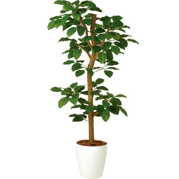 最新な リーフ 人工樹木 菩提樹 装飾:グリーンランド ディスプレイ 花材 全高1.5m ベンガルボダイジュ 葉材 造花 フェイクグリーン オブジェ インテリアグリーン 人工観葉植物 ディスプレイ ホワイト鉢-花・観葉植物