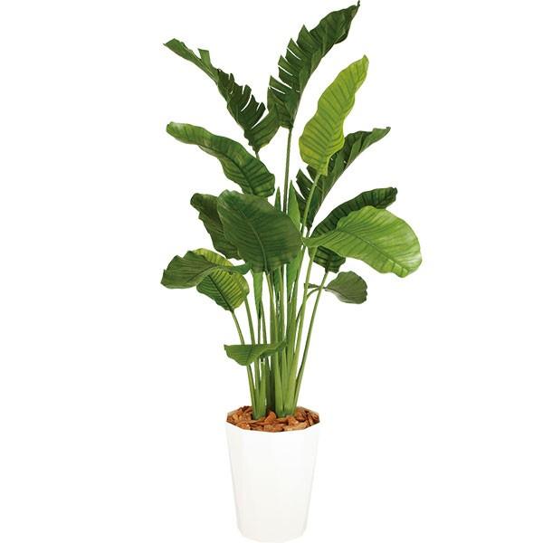 人工観葉植物 全高2.0m デラックス ストレリチア オーガスタ ホワイト鉢 人工樹木 造花 花材 リーフ インテリアグリーン フェイクグリーン トロピカルグリーン オブジェ ディスプレイ 装飾