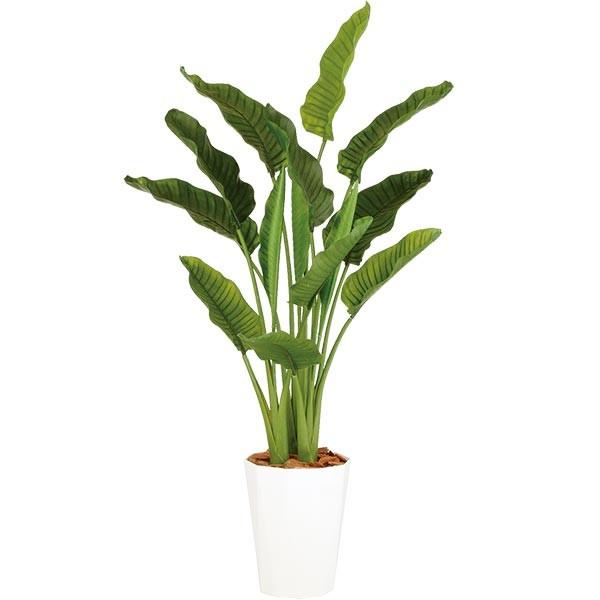人工観葉植物 全高1.7m デラックス ストレリチア オーガスタ ホワイト鉢 人工樹木 造花 花材 リーフ インテリアグリーン フェイクグリーン トロピカルグリーン オブジェ ディスプレイ 装飾