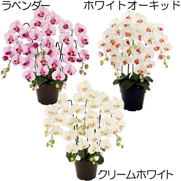 【光触媒加工】 造花 胡蝶蘭5本立ち 全高70cm コチョウラン 蘭 オーキッド 人工観葉植物 鉢物 祝い花 贈り花