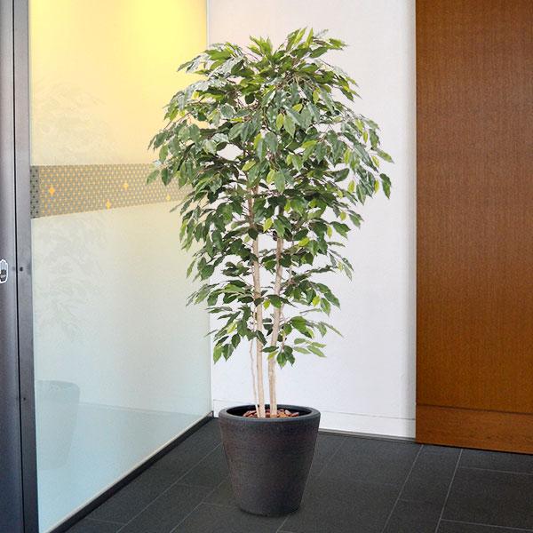全高3.0m ベンジャミン ライト 大型 (配送制限あり) (造花 フェイクグリーン 特大 人工観葉 植木 樹木 フィカス 偽物 装飾 ライトグリーン)(bst0067-300)