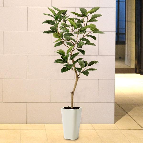 【人工植物】 全高1.5m デコラゴムの木 ワイヤー入り合成樹脂製人工幹 人工観葉植物 人工樹木 造花 インテリアグリーン フェイクグリーン FSTフリースタイルトランク