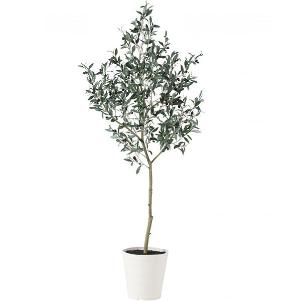 人工観葉植物 全高1.8m 実付き ブラック オリーブ オレイフ 人工樹木 造花 花材 リーフ インテリアグリーン フェイクグリーン オブジェ ディスプレイ 装飾 FST フリースタイルトランク