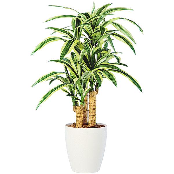 人工観葉植物 全高1.0m 鉢付き ドラセナ ホワイト鉢 レフレクサ 人工樹木 造花 フェイクグリーン インテリアグリーン オブジェ ディスプレイ 装飾