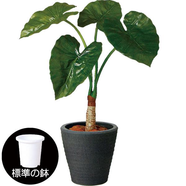 人工観葉植物 全高70cm クワズイモ グリーンパラソル 人工樹木 造花 フェイクグリーン インテリアグリーン オブジェ ディスプレイ 装飾