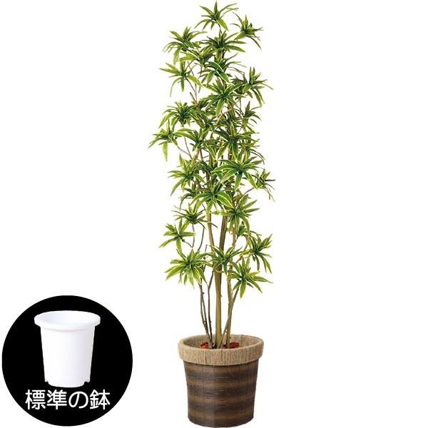 人工観葉植物 全高1.8m FST ソング オブ インディア ドラセナ レフレクサ 人工樹木 造花 フェイクグリーン インテリアグリーン オブジェ ディスプレイ 装飾
