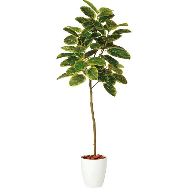人工観葉植物 全高1.5m フィカス アルテシマ ホワイト鉢 FST アルティッシマ 人工樹木 造花 花材 リーフ 葉材 インテリアグリーン フェイクグリーン オブジェ ディスプレイ ディスプレー 装飾