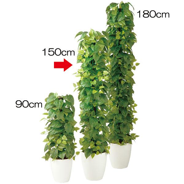 人工観葉植物 全高1.5m ポトス ホワイト鉢 タワー ヘゴ オウゴンカズラ 人工樹木 造花 葉材 リーフ フェイクグリーン インテリアグリーン オブジェ ディスプレイ 装飾