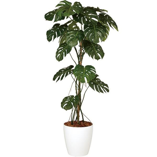 人工観葉植物 全高1.8m モンステラ ホワイト鉢 ホウライショウ 鳳来蕉 人工樹木 造花 フェイクグリーン インテリアグリーン オブジェ ディスプレイ 装飾