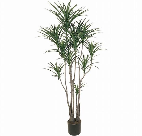 人工観葉植物 全高1.85m ドラセナ ユッカ 青年の木 エレファンティペス 人工樹木 造花 フェイクグリーン インテリアグリーン オブジェ ディスプレイ 装飾