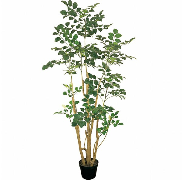 人工観葉植物 全高2.0m ポリシャス タイワンモミジ 人工樹木 造花 リーフ インテリアグリーン フェイクグリーン オブジェ ディスプレイ ディスプレー 装飾