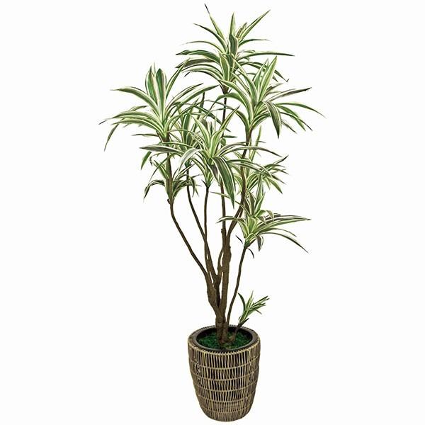 人工観葉植物 全高1.65m ドラセナ ユッカ 青年の木 エレファンティペス 人工樹木 造花 フェイクグリーン インテリアグリーン オブジェ ディスプレイ 装飾