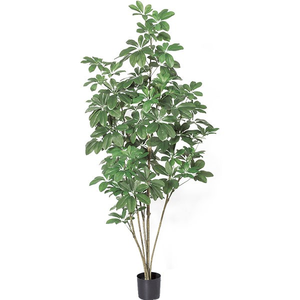 人工観葉植物 全高1.48m シェフレラ カポック アルボリコラ 人工樹木 造花 フェイクグリーン インテリアグリーン オブジェ ウェルカムツリー ディスプレイ ディスプレー 装飾
