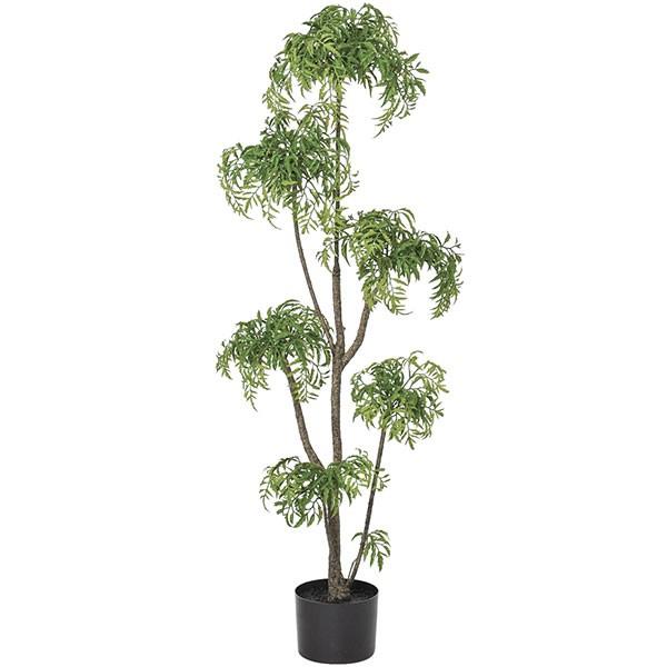 人工観葉植物 全高1.2m アラリア アラレア ディジゴセカ 人工樹木 造花 花材 リーフ 葉材 インテリアグリーン フェイクグリーン オブジェ ディスプレイ ディスプレー 装飾