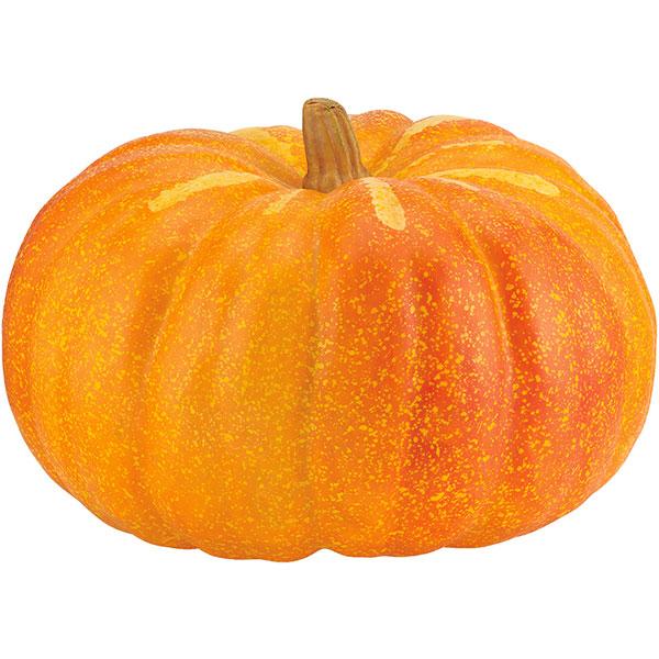 【食品サンプル】 パンプキン 全長32cm かぼちゃ カボチャ 南瓜 フェイクフード 食品模型 オブジェ フラワーアレンジメント ディスプレイ 装飾 ハロウィン イベント 空間演出